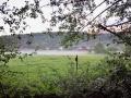 Morgondimma över fälten